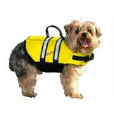 Pet Safety & Accessories