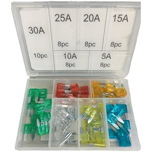 50pc Mini Fuse Assortment